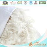 La pluma del pato abajo amortigua interno con la cubierta pura del algodón 233tc