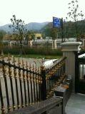 Pasamano de acero del balcón de la manera con la pintura a pistola de epoxy de polvo de Akzo Nobel