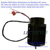 DC 무브러시 냉각탑 모터 또는 증발기 배기 엔진 모터