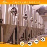 Sistema di fermentazione dei 7 barilotti per birra che fa pianta