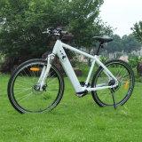 隠された電池が付いている36V山の電気バイク