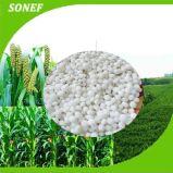 Fertilizzante solubile in acqua 19-9-19 del residuo NPK di prezzi di fabbrica del fertilizzante di NPK