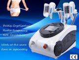 Carrocería ultrasónica del RF de la cavitación 40k del ultrasonido que adelgaza la máquina de la pérdida de peso de Cryolipolysis