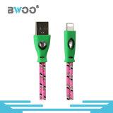 Вспомогательное оборудование телефона кабеля USB цветастого освещения фабрики Braided