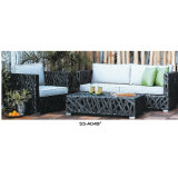 Sofá del jardín fijado con la mesa de centro