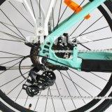 de Lange Waaier van 80km Dame Style Road E Bike
