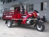 Triciclo del cargo de Afganistán, motocicleta de la rueda 150cc tres (TR-10)