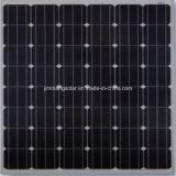 2016 mono comitato solare caldo di vendita 150W con buona qualità ed il prezzo competitivo (jinshang solare)