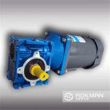 Motor del engranaje de gusano de la caja de engranajes del gusano de la serie de rv