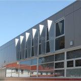 Pannellatura di alluminio di costruzione personalizzata della parete del favo della decorazione della facciata