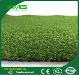 Зеленая трава для поля для гольфа