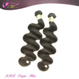 O cabelo malaio natural pode ser cabelo humano tingido de Remy do Virgin