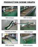De Transportband van de Riem van het Roestvrij staal van de Apparatuur van de transmissie (Har003)