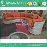 Heißes Verkaufs-Sofa-Qualitäts-Rattan-Sofa-gesetztes neues Entwurfs-Sofa-Patio-Ecken-Sofa-gesetztes im Freien Weidensofa (MAGISCHE ART)