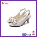 白いカラーは女性靴を締めた