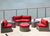 sofa semi circulaire de type de jardin de balcon de la cour by-441