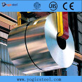 ST12 laminado en frío de acero de la bobina / hoja / Gaza