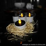 Gelbe flammenlose Minitee-Licht-Kerzen der form-LED Solar
