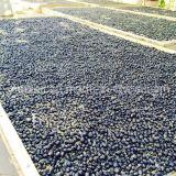 La nespola ha certificato Gojivberry Goji nero secco organico