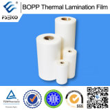 Film thermique de stratification prégommé par BOPP (mat)