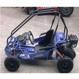 50cc 2シートはKartの差動小型バギー子供のための行く