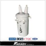7620 / 13200V 10kVA Amorphous Core Transformer (AMDT)