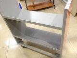 Chariot à livre mobile de bibliothèque de face de double en métal à vendre (ST-29)