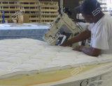 Gravar a máquina de costura EXB da borda