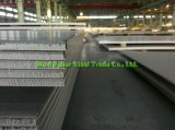 316 430/304 hoja de acero inoxidable con el grueso de 5m m