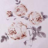 Taihuの雪Oekoは品質の絹の慰める人の一定の寝具の一定の絹の羽毛布団カバーを証明した
