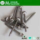 Tipo 17 parafuso de batida principal do aço inoxidável da arruela do Hex