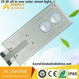 25 W todo en una luz solar de la calle LED con el panel solar