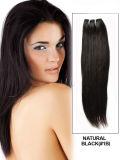 最上質の100%の人間の毛髪Extenison