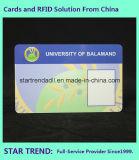 Карточка удостоверения личности студента с Barcode для школы