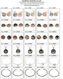Qualitäts-Form-Silber-Ohrring-Farben-Stein-Ohrringe (E6662)