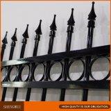 Rete fissa decorativa europea del giardino del ferro saldato