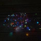 電池式のリモコンRGB LEDのクリスマスのシードワイヤーライト