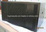 S8028 het Dubbele Mobiele Project Binnen of OpenluchtAduio van 18 Duim