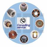 Servicio de Consultoría Técnica de Fabricación de Motor