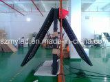 Высокое качество экрана дисплея СИД крытое и напольное, P4 P5 P6 SMD etc