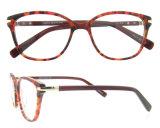 형식 공상 아세테이트 Eyewear 새로운 프레임 다채로운 안경알 프레임