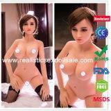 Silikon-Minigeschlechts-Puppe-Förderung mit MSDS Bescheinigung