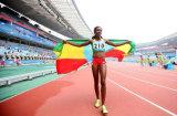 Su ordinazione impermeabilizzare e modello no. della bandiera nazionale dell'Etiopia della bandiera nazionale di Sunproof: NF-064