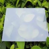 Panneau solide givré de polycarbonate pour le matériau de décoration de mur de Chambre