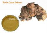 Травяные полисахариды выдержки 30% корня Cocos Poria ингридиента, Poriatin 2%, 4:1 ~20: 1