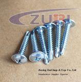 Parafuso Drilling 4.2*16 do auto principal da bolacha