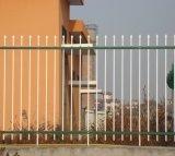Geeignete einfache Wohnsicherheit galvanisierter Stahlzaun