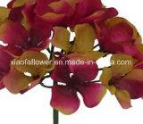 Solo vástago de la flor artificial/plástica/de seda del Hydrangea (XF30020)