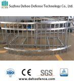 Fonctionnement simple non de frontière de sécurité en acier galvanisée de balcon enduite par poudre