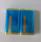 bateria alcalina 6lr61 9V do Shrink 2PCS